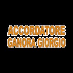Accordatore Ganora - Pianoforti Genova