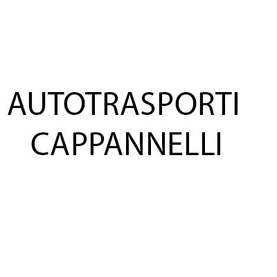Autotrasporti Cappannelli - Centro Revisioni Auto Moto - Autotrasporti Padule