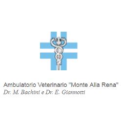 Ambulatorio Veterinario Monte alla Rena - Veterinaria - ambulatori e laboratori Rosignano Marittimo