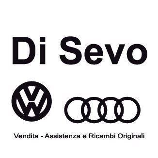 Di Sevo Carmine Service Partner - Ricambi e componenti auto - commercio Vallo della Lucania