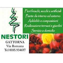 Nestori Fiori - Fiori e piante - vendita al dettaglio Moconesi