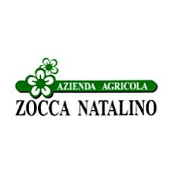Azienda Agricola Zocca Natalino - Aziende agricole Bussolengo