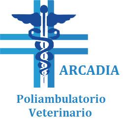 Ambulatorio Veterinario Arcadia - Veterinaria - ambulatori e laboratori Montesilvano