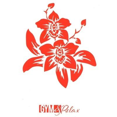A.S.I. Comitato Provinciale Gym e Relax - Istituti di bellezza Grosseto