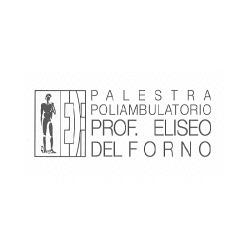 Palestra Prof. Eliseo del Forno - Medici specialisti - dermatologia e malattie veneree Piacenza