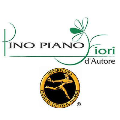 Fiorista Piano - Fiori e piante - vendita al dettaglio Campobasso