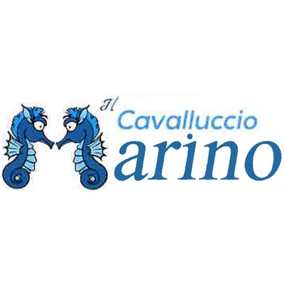 Ristorante Il Cavalluccio Marino - Ricevimenti e banchetti - sale e servizi Campobasso
