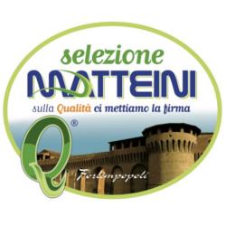 Matteini - Centri commerciali, supermercati e grandi magazzini Forlimpopoli