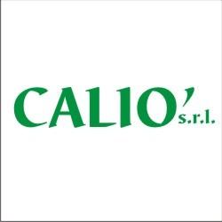 Autoricambi Calio' - Autofficine e centri assistenza Catanzaro