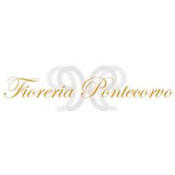 Fioreria Pontecorvo - Fiori e piante - vendita al dettaglio Padova