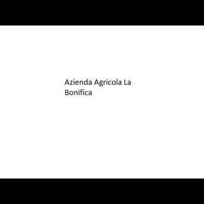 Azienda Agricola La Bonifica di Lubiana Sabrina - Formaggi e latticini - vendita al dettaglio Grado