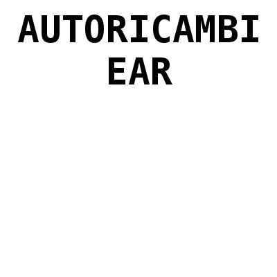 Autoricambi Ear - Ricambi e componenti auto - commercio Pescara