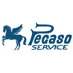 Pegaso Service - Recapito pacchi, plichi e lettere - agenzie Bologna