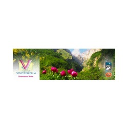 Albergo Vincenzella - Alberghi Caramanico Terme