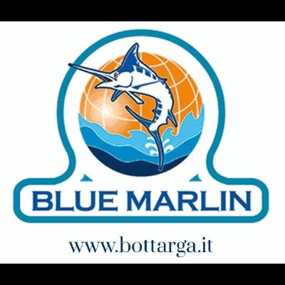 Blue Marlin - Bottarga e Ricci di Mare - Pesci conservati Mogoro