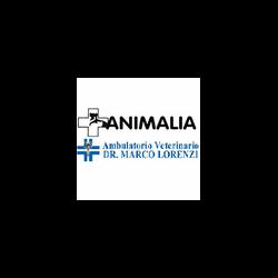Ambulatorio Veterinario Dr. Marco Lorenzi - Veterinaria - ambulatori e laboratori Mozzo