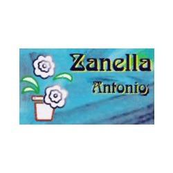Floricoltura Zanella - Fiori e piante - ingrosso Malo