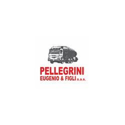 Pellegrini Eugenio & Figli Sas - Carburanti - produzione e commercio Massa e Cozzile