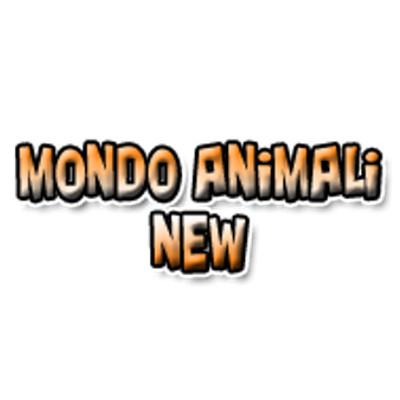 Mondo Animali New - Animali domestici - toeletta Benevento