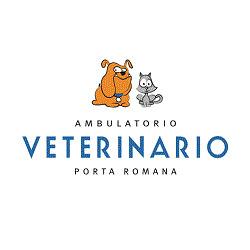 Ambulatorio Veterinario Porta Romana - Veterinaria - ambulatori e laboratori Firenze