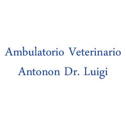 Ambulatorio Veterinario Antonon Dr. Luigi - Veterinaria - ambulatori e laboratori Cento