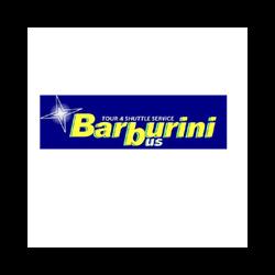 Autoservizi Barburini Bus - Autonoleggio Gemona del Friuli