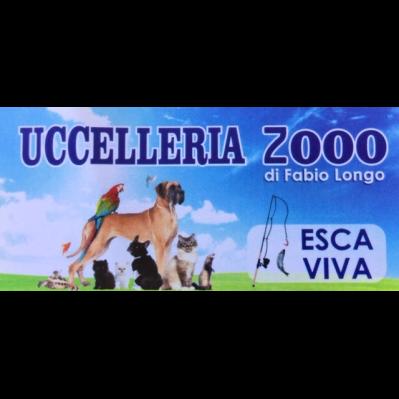 Uccelleria 2000 - Madagascarshop.it - Animali domestici, articoli ed alimenti - vendita al dettaglio Paola