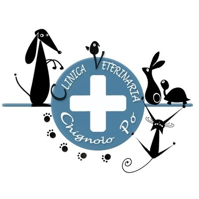 Clinica Veterinaria Chignolo Po - Veterinaria - ambulatori e laboratori Chignolo Po