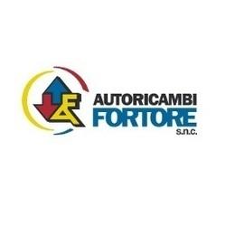 Autoricambi Fortore - Ricambi e componenti auto - commercio San Marco dei Cavoti