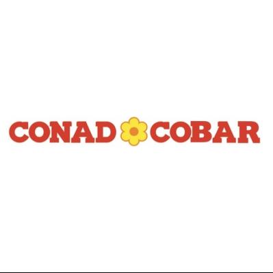 Conad Cobar - Centro Commerciale La Pieve - Centri commerciali, supermercati e grandi magazzini Bagnacavallo
