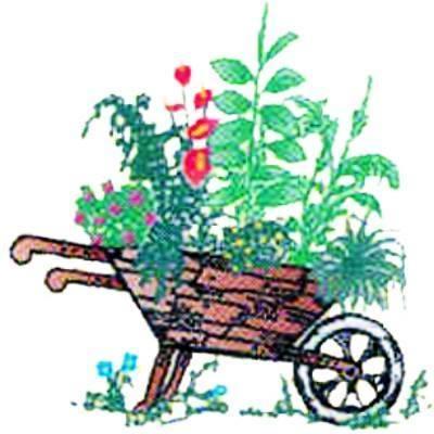 Vivai La Margherita - Vivai piante e fiori Fisciano