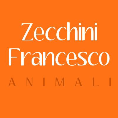 Zecchini Francesco - Animali domestici, articoli ed alimenti - vendita al dettaglio Cuggiono
