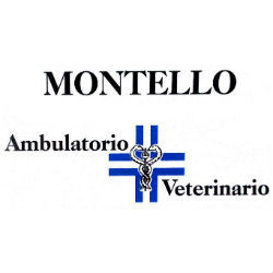 Ambulatorio Veterinario Montello