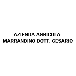Azienda Agricola Marrandino Cesario - Consulenza commerciale e finanziaria Aversa