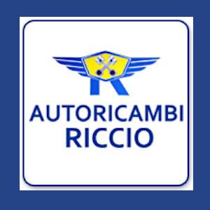 Autoricambi Riccio - Ricambi e componenti auto - commercio Giugliano in Campania