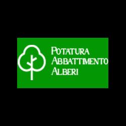 Ambrosini MultiServizi - Imprese edili Montopoli in Val d'Arno