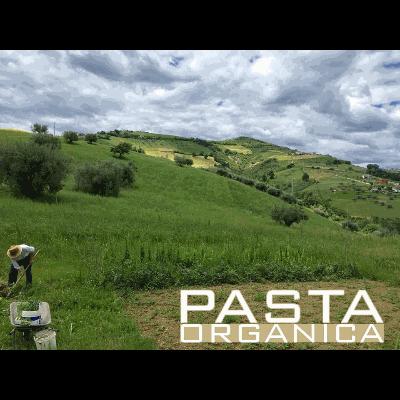 Casale le Querce - Agriturismo Cellino Attanasio