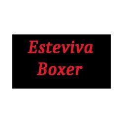 Esteviva Boxer - Animali domestici - vendita Ferrara