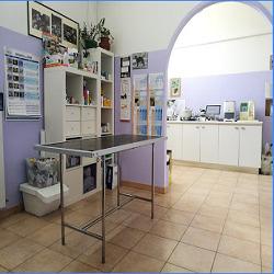 Ambulatorio Veterinario Carminiani - Veterinaria - ambulatori e laboratori Castagneto Carducci