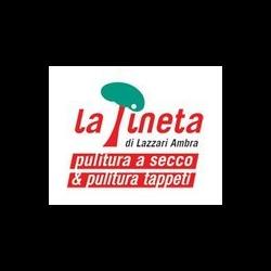 La Pineta Pulitura a Secco - Tappeti Bologna