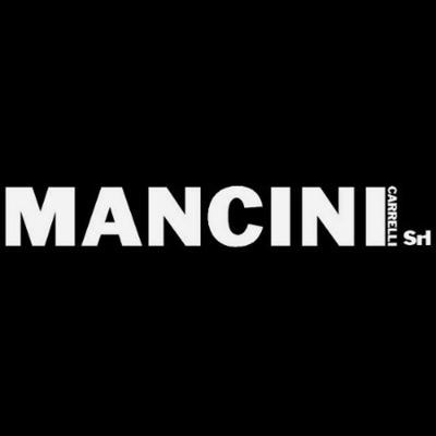 Mancini Carrelli - Carrelli elevatori e trasportatori - commercio e noleggio San Martino dei Mulini