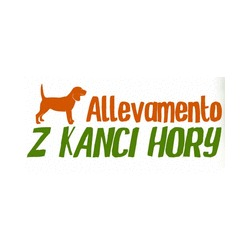 Allevamento Z Kanci Hory - Animali domestici - allevamento e addestramento Serra Riccò