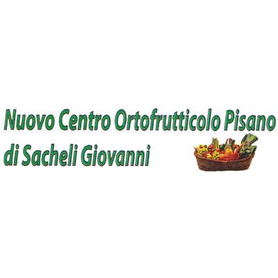 Nuovo Centro Ortofrutticolo Pisano - Frutta e verdura - ingrosso San Giuliano Terme