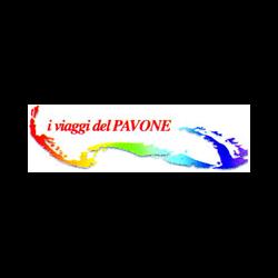 Pavone Viaggi-Noleggio Bus Gt - Autonoleggio Castellaneta