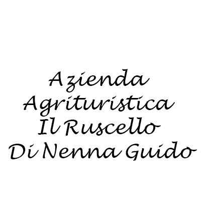 Azienda Agrituristica Il Ruscello Di Nenna Guido - Oli alimentari e frantoi oleari Chianni