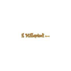 Calzature Il Millepiedi - Calzature - vendita al dettaglio Assisi