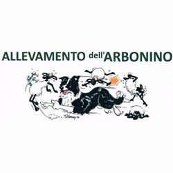 Allevamento dell'Arbonino - Animali domestici - allevamento e addestramento Netro