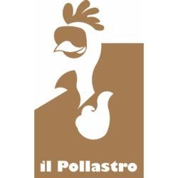 Il Pollastro - Pizzerie Settimo Torinese