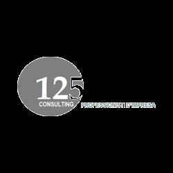 125 Consulting Professionisti D'Impresa - Elaborazione dati - servizio conto terzi Mestre