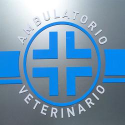 Centro Veterinario Nus - Veterinaria - ambulatori e laboratori Nus